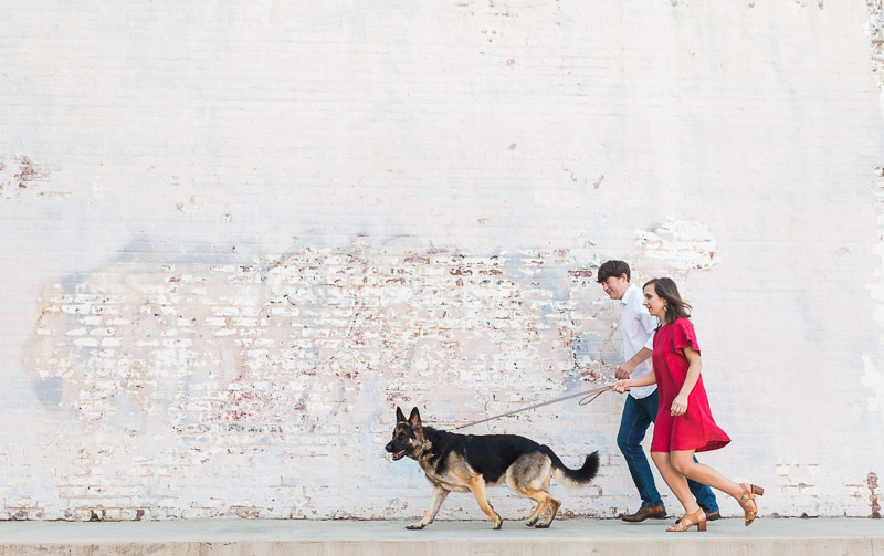 German Shepherd leading the way, ideas for photos with a dog, ©Story & Rhythm, Raleigh, NC engagement session