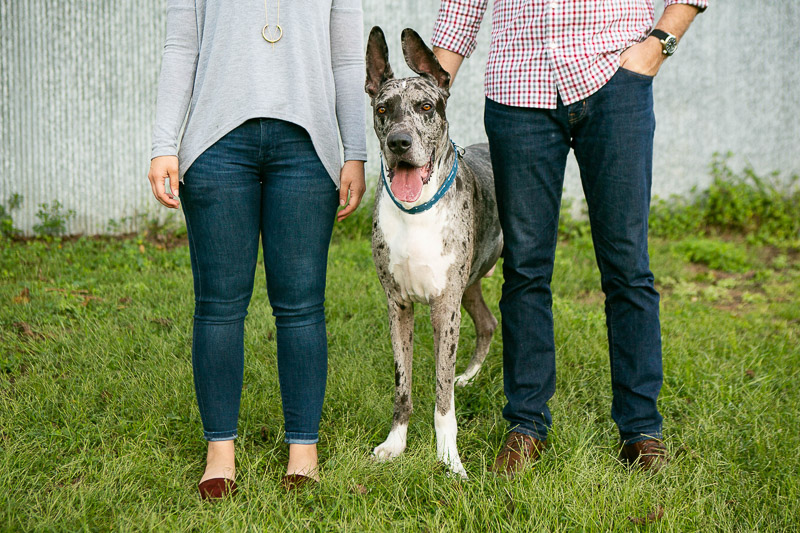 Great Dane and his humans, ©Mandy Whitley Pet Photography | Nashville Pet Photographer
