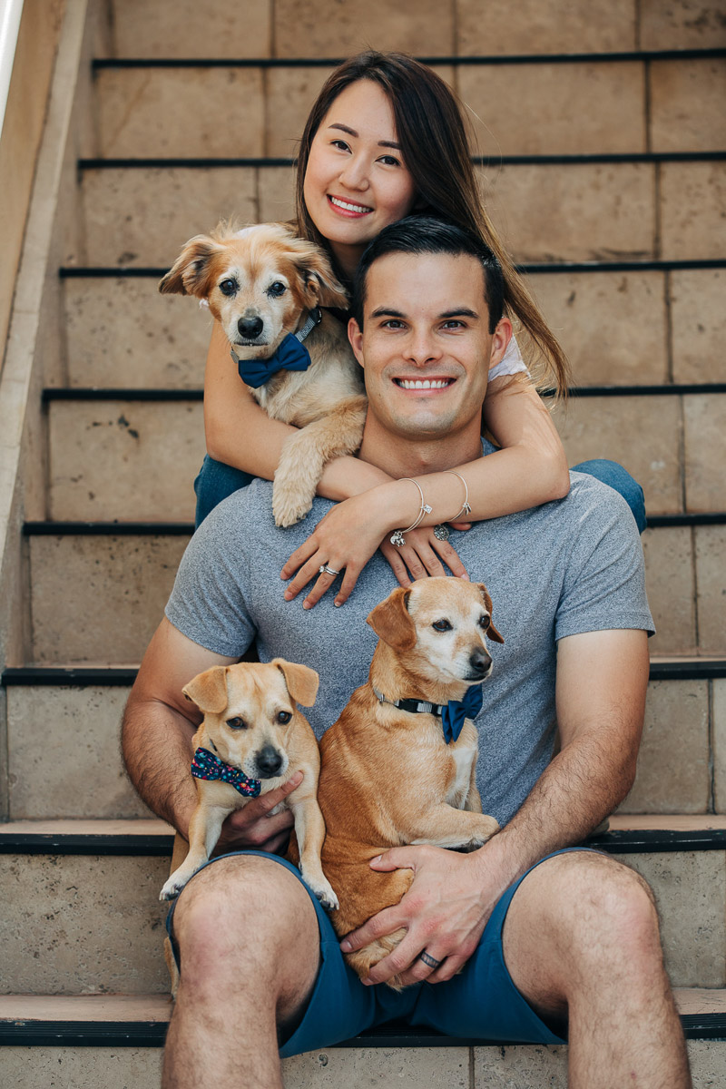 couple and their 3 rescue dogs sitting on steps, dachshund mix, ©222 Photography | dog-friendly family photos
