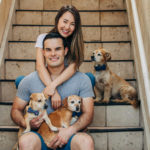 Happy Tails:  Mickey, Bailey, & Lucky the Dachshund Mixes