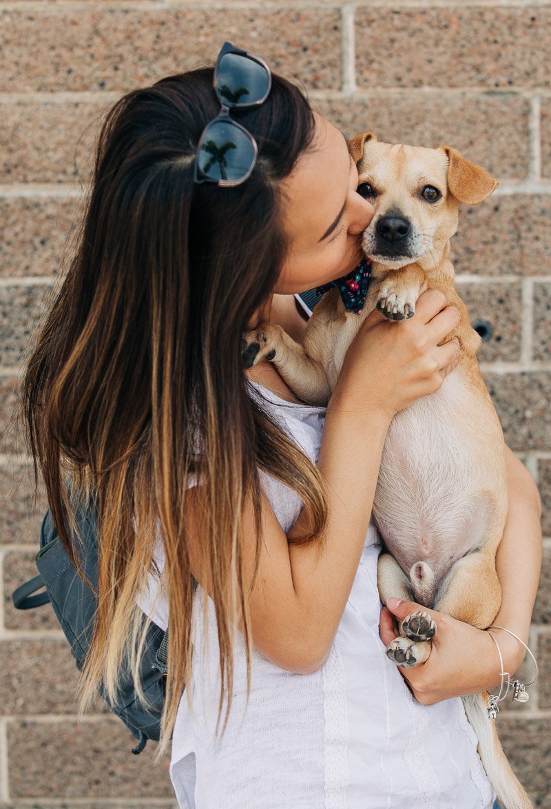 woman kissing mixed breed, doxie mix, adopt, don't shop ©222 Photography | lifestyle dog photography, Huntington Beach