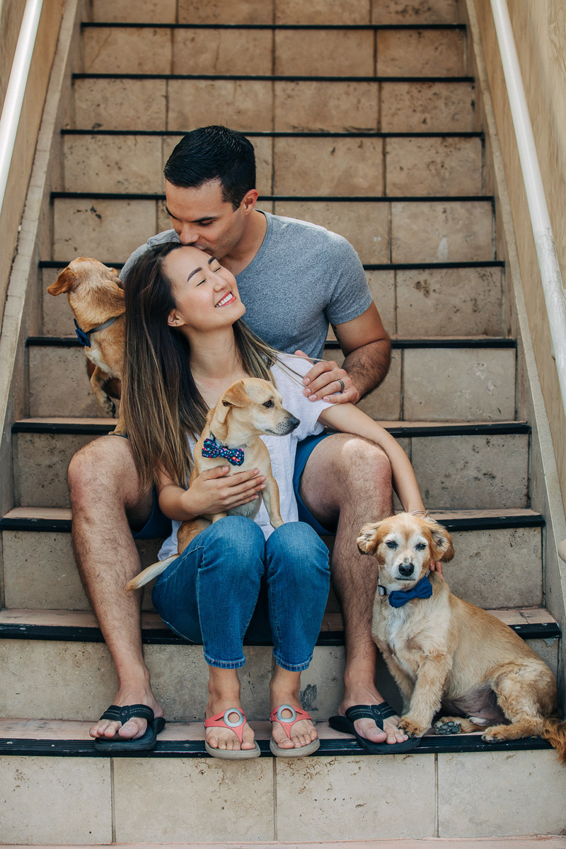 ©222 Photography | lifestyle dog photography, Huntington Beach