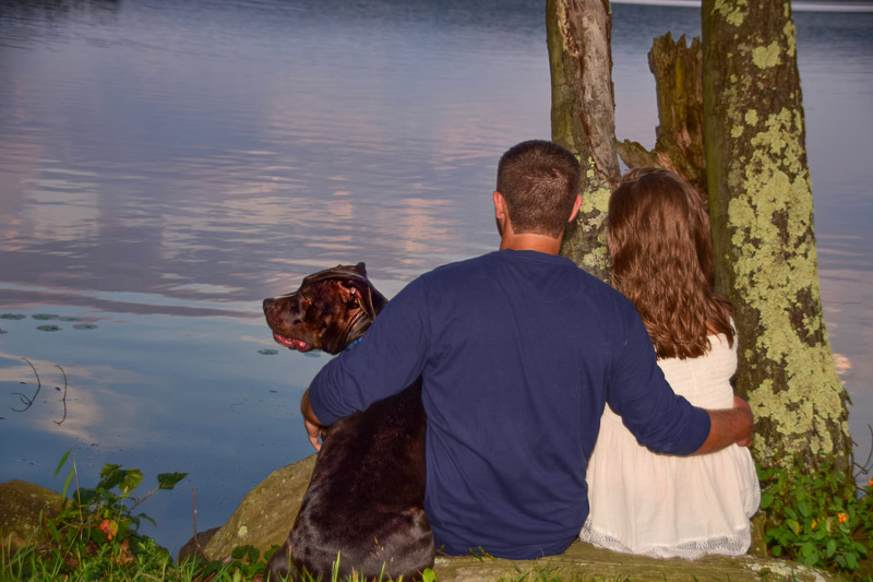 ©Photos By Miss Kris | dog-friendly engagement session, couple and their dog looking at the lake