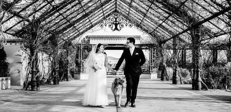 just married couple and their dog, ©Melissa J Koko Las Cruces, NM Photographer