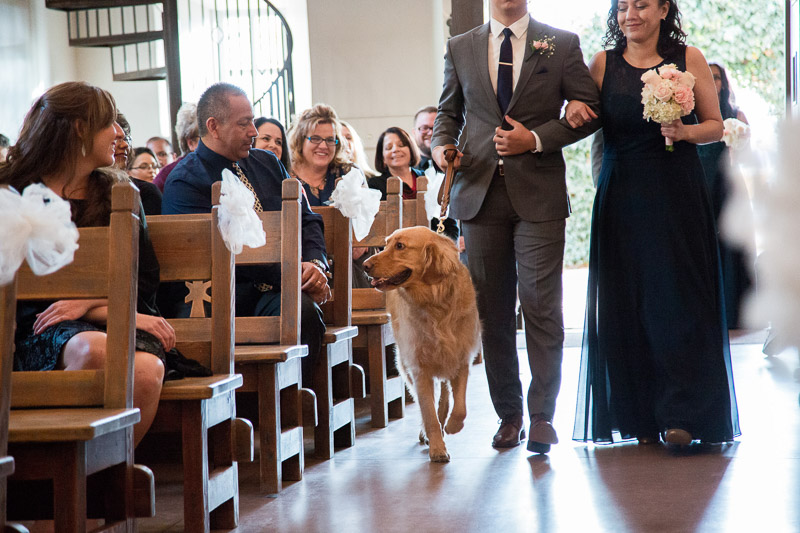 dog walking down the aisle, dog-friendly wedding | ©Melissa J Koko Film + Portraits