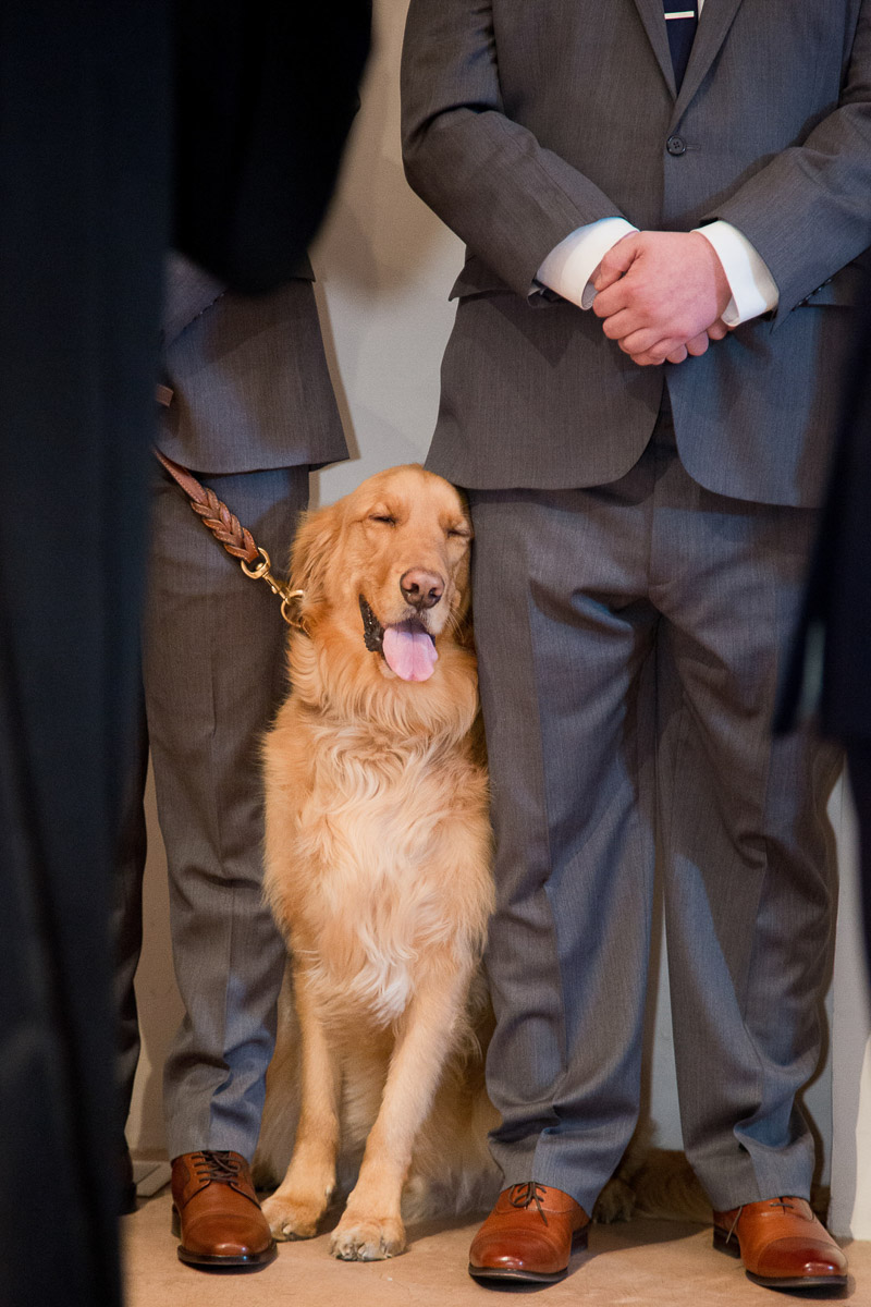 dog-friendly wedding | ©Melissa J Koko Las Cruces, NM Photographer