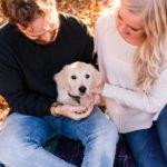 Puppy Love:  Wilson the English Cream Golden Retriever