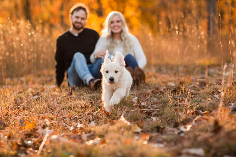 adorable puppy running through leaves, beautiful fall family photos | ©Katelyn Workman Photography | WV dog-friendly family portraits