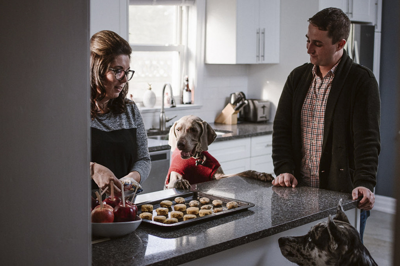 In Home Lifestyle Session With Dogs,mixed breed and Weimaraner watching humans make cookies | ©Sandy Anger Studios |