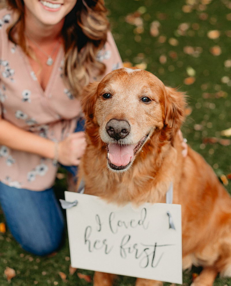 young woman and senior dog, Dog wearing I loved her first sign ©Dewitt For Love Photography