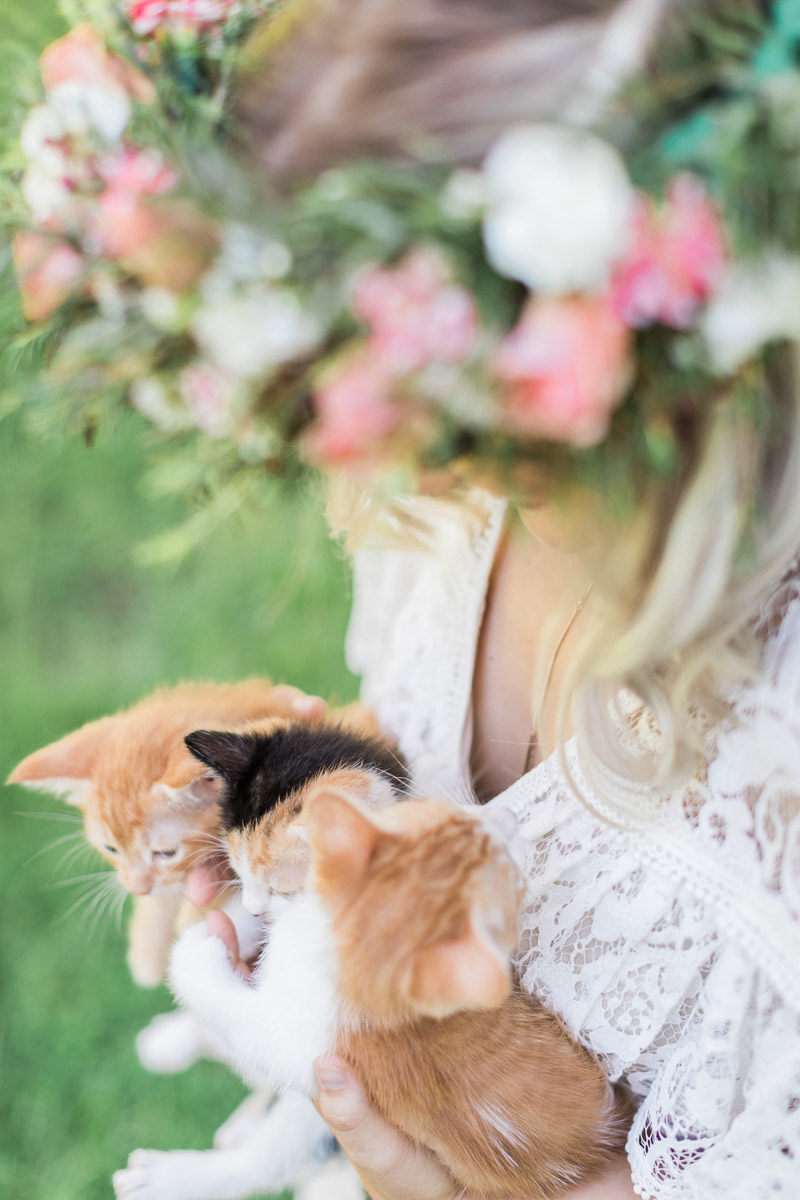 Photographers helping homeless kittens, © R and M Bledsoe Photography | kitten friendly styled shoot, bridal portrait session with kittens
