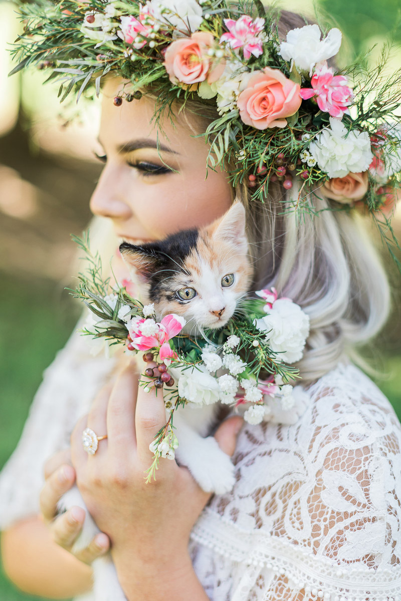 bridal portrait with kittens, Houston wedding photographers © R and M Bledsoe Photography