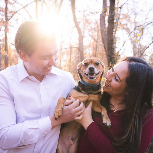 Dog-Friendly Maternity Session | St. Louis, MO