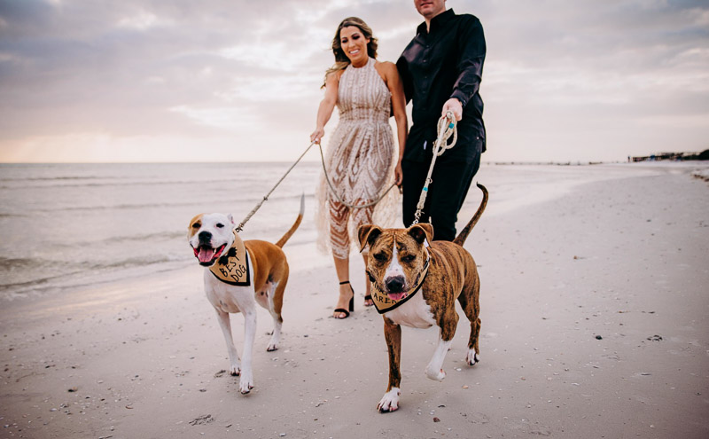 dog-friendly engagement photos, ©Landrum Photography