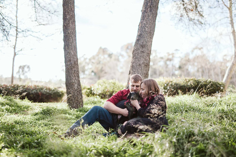 couple sitting in tall grass with their small black dog, ©Playful Soul Photography Engagement Photos With Dog