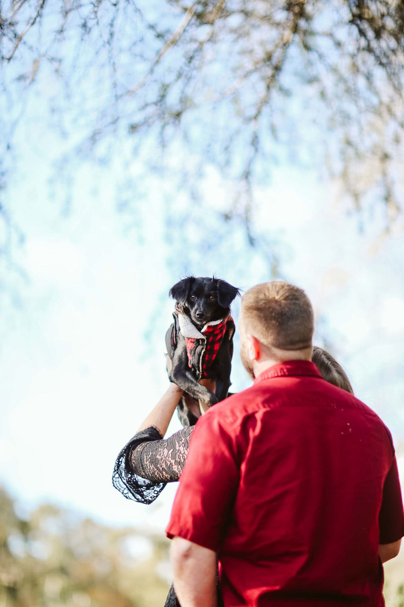 dog-friendly engagement session, Irvine, CA | ©Playful Soul Photography