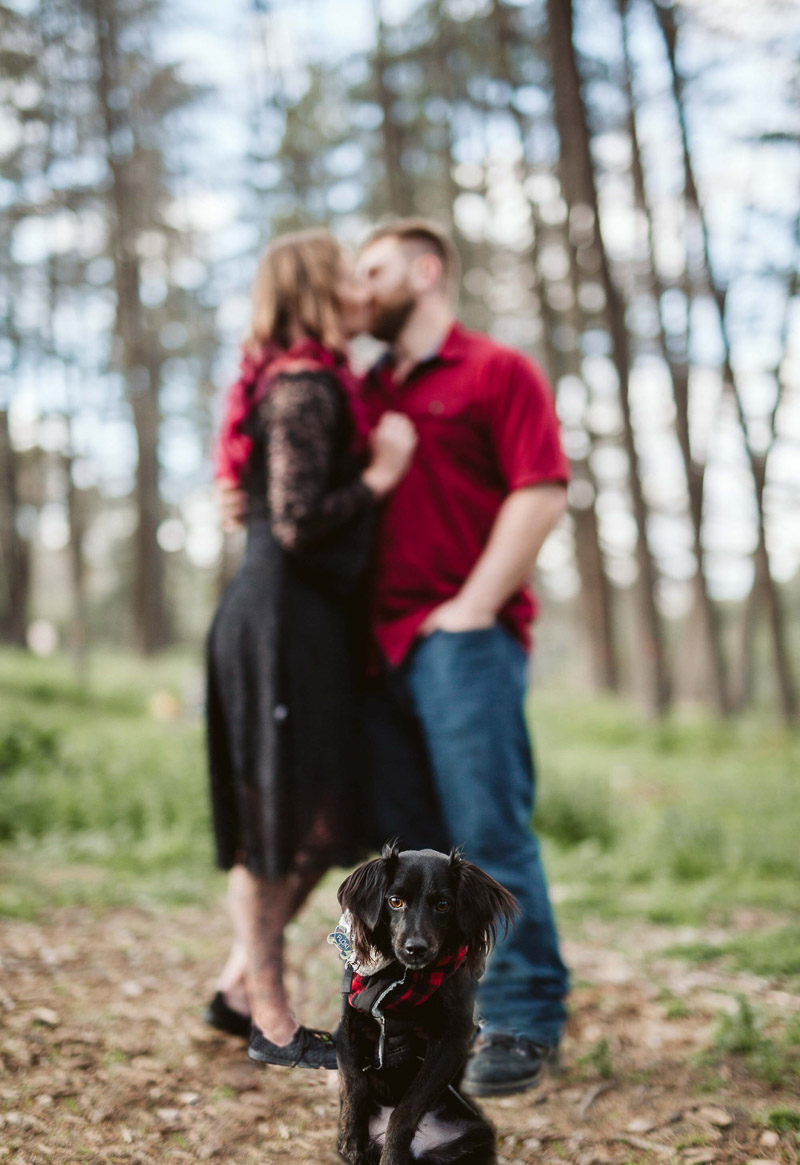 cute mixed breed dog and couple, dog-friendly engagement photos | ©Playful Soul Photography