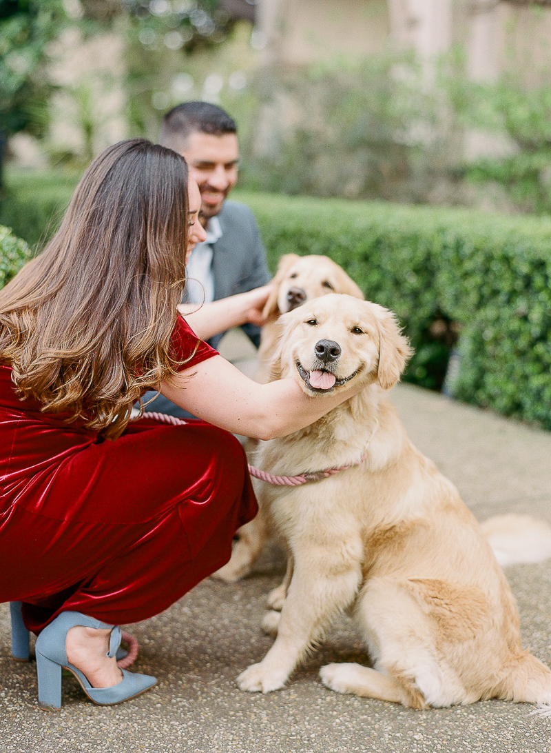 dog stealing the spotlight during engagement session | ©The Ganeys