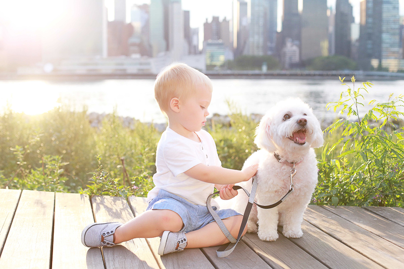 a boy and his dog, lifestyle pet and kid photography, Helena Woods, NYC