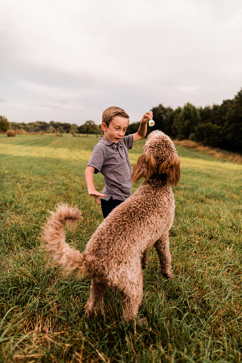 boy playing Goldendoodle | © Jasmine White Photography | lifestyle dog photography