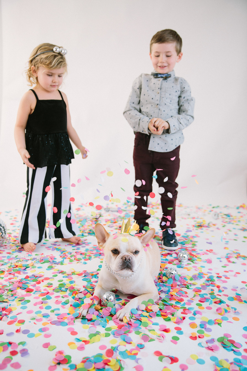 studio portraits, kids and dogs, Freeport, Maine, | ©Maine Tinker Photography