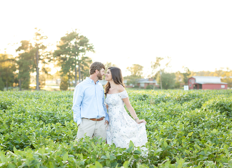 summer engagement pictures on a farm, ©Brynn Gross Photography, Sanford, NC