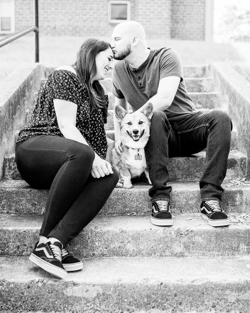 spring dog-friendly engagement portraits, Northern Virginia ©Morgan Lee Photography