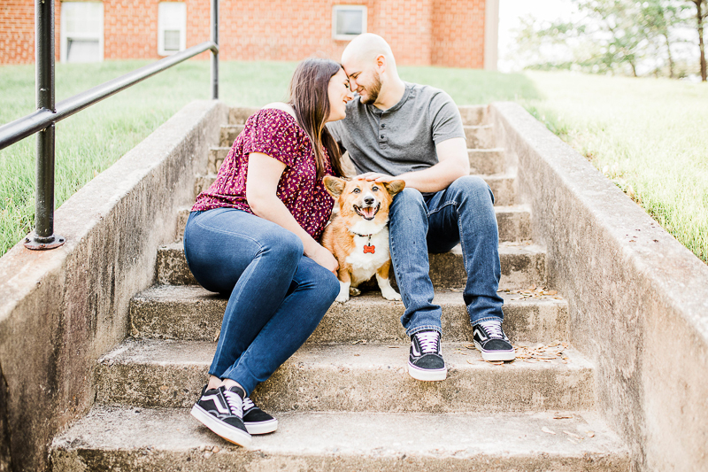 cute dog sitting on steps with his family | ©Morgan Lee Photography | Northern Virginia engagement photography
