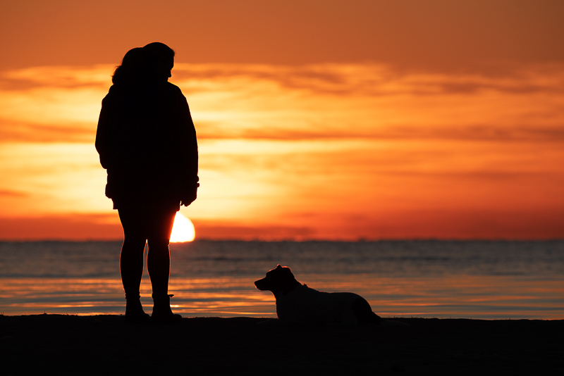 small dog and woman at sunrise, on location beach photography | ©Steven Penman Photography, St Leonards, Victoria