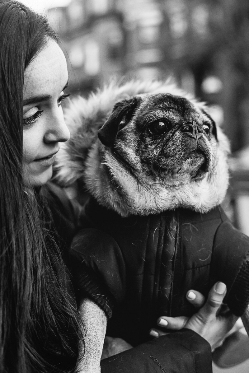 New England lifestyle pet and people portraits, woman holding senior dog | ©Mei Lin Barral Photography, lifestyle pet photographer, Boston and New England