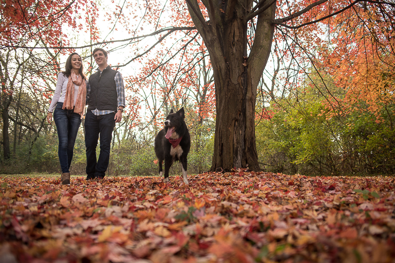Fall engagement session with a dog, ©Ueda Photography, Madison, WI