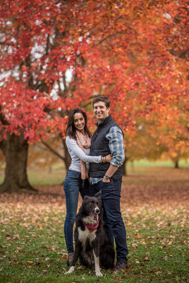 Fall engagement session with a dog | Ueda Photography