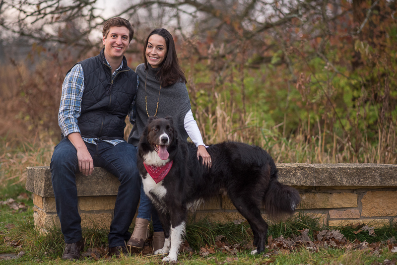 fall engagement photos with a Border Collie, ©Ueda Photography, Madison, WI