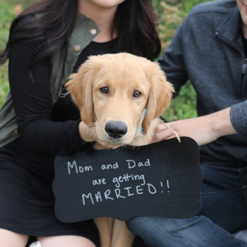 Dog-friendly Engagement Photos | Fort Wayne, IN