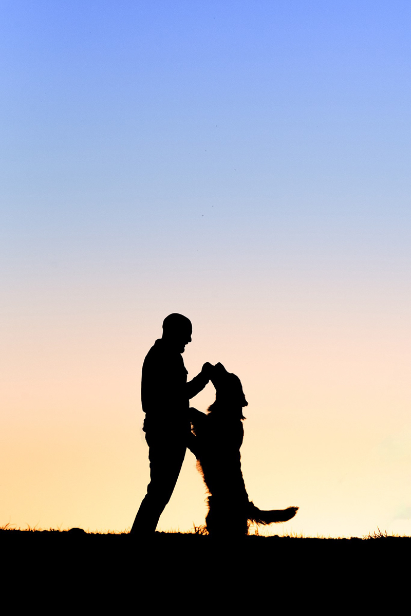 silhouette of man and dog, ©Bark & Gold Photography, Pittsburgh dog photographer