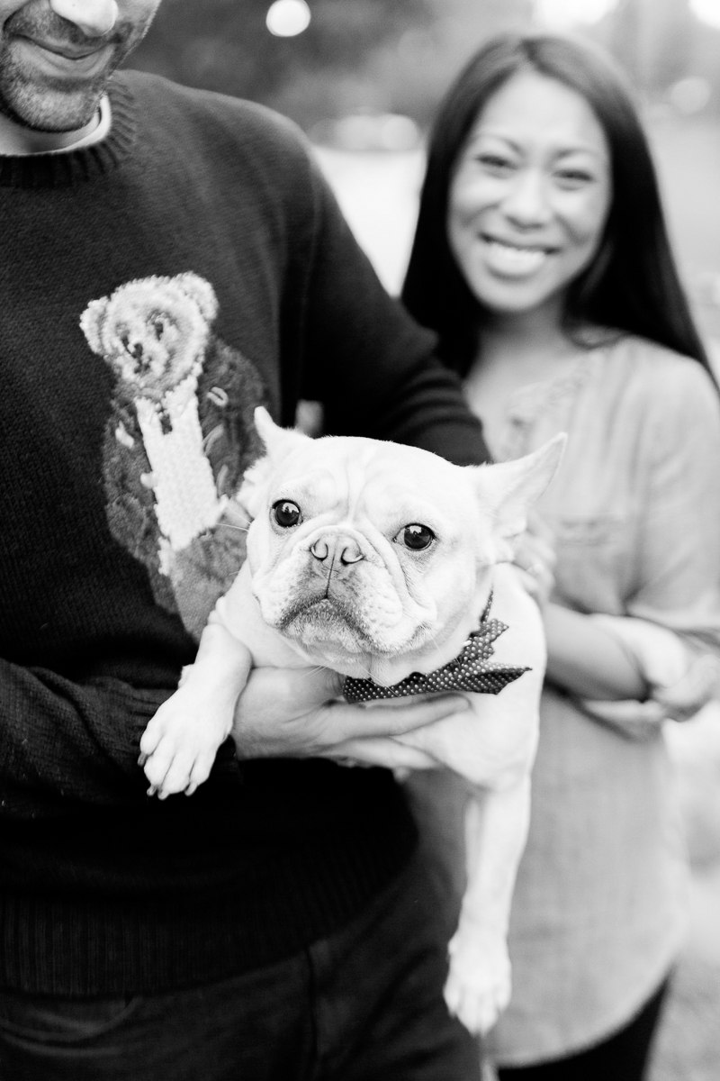 cute French Bulldog, pet-friendly engagement photos | ©Jessica Hunt Photography