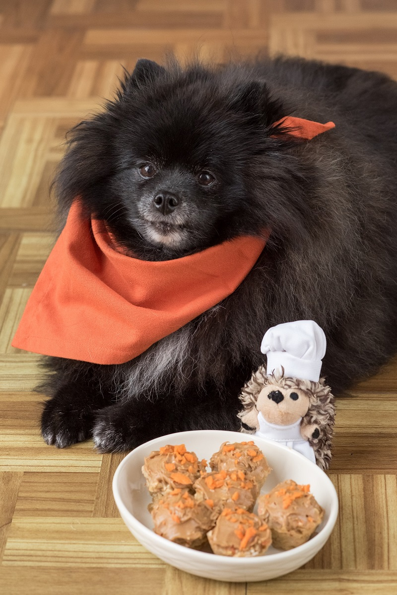 vegan carrot pupcakes, things to do while keeping social distance during COVID