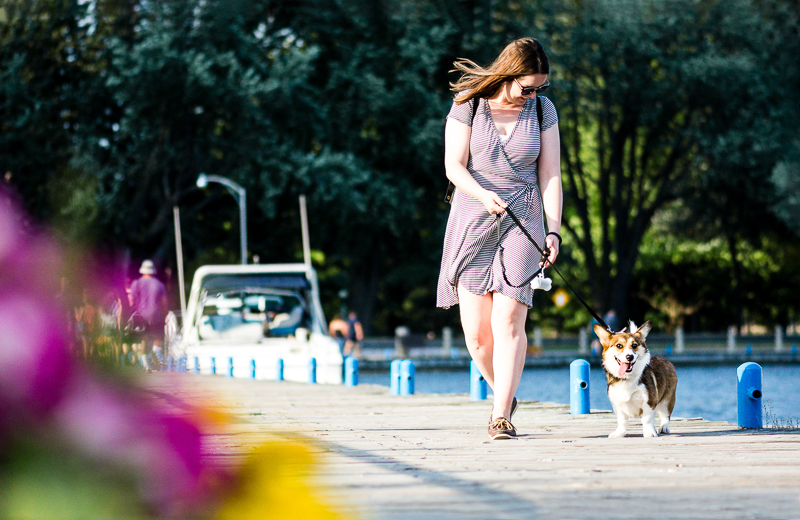 woman walking her dog along a dock | ©Beth Photography, Ottawa pet photographer