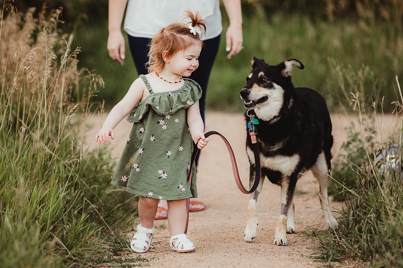 toddler walking her dog, girl's best friend | ©Good Morrow Photography | Arvada, CO
