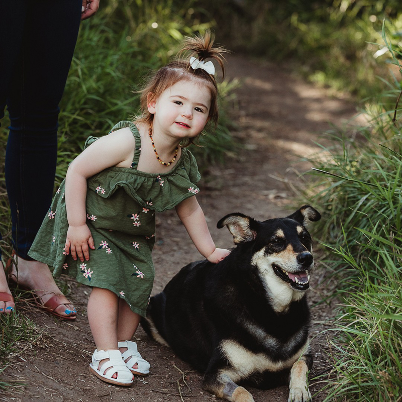 toddler wearing green dress petting her dog | ©Good Morrow Photography |