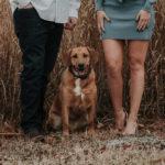 Dog-friendly Engagement Session | Wilmington Riverfront