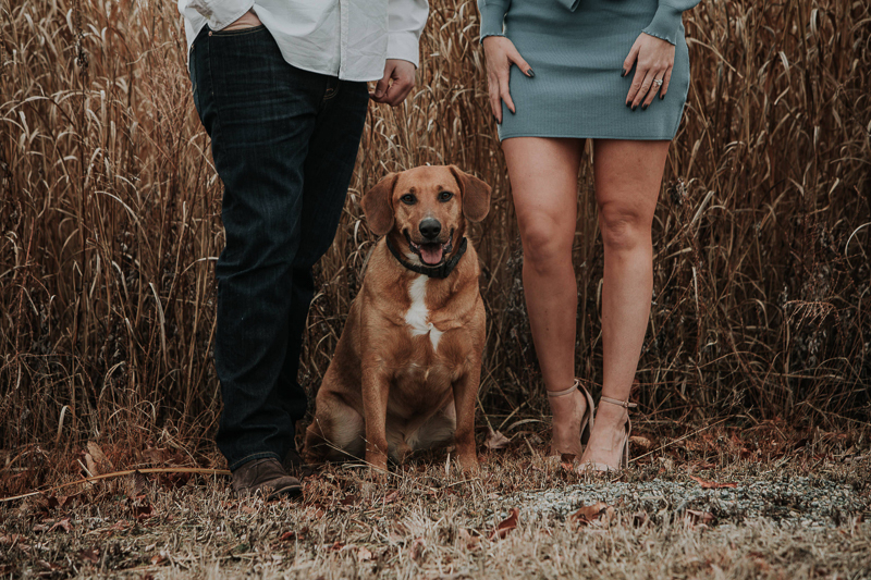 dog-friendly engagement photos with mixed breed, Wilmington Riverfront | ©Kelli Wilke Photography