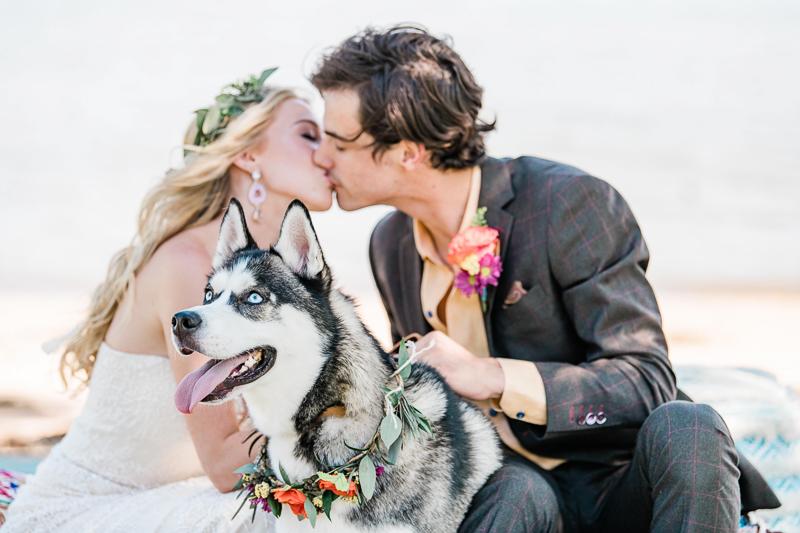 Siberian Husky and couple, boho inspired wedding details, wedding dog | ©Landrum Photography