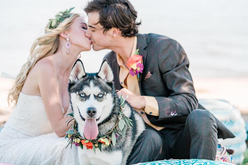 dog wearing floral collar, boho inspired wedding ideas, wedding dog | ©Landrum Photography