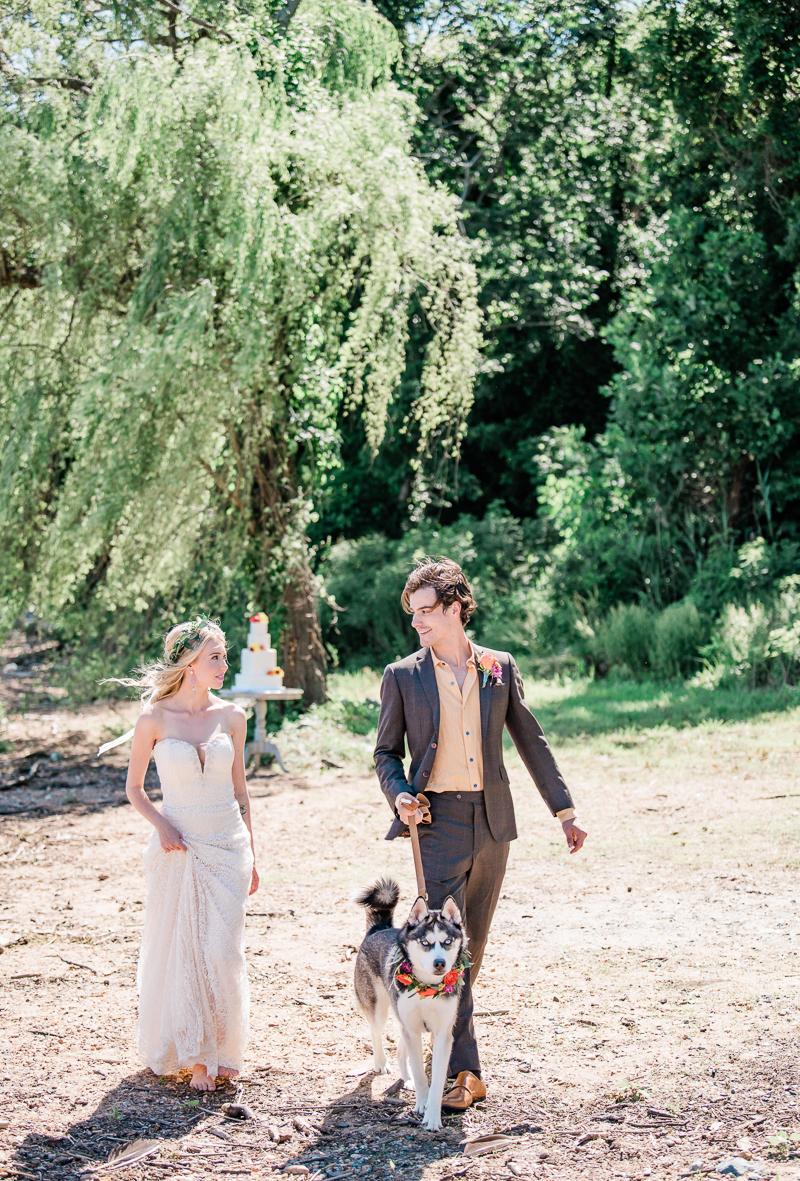 bride and groom walking Siberian Husky, wedding dog | ©Landrum Photography