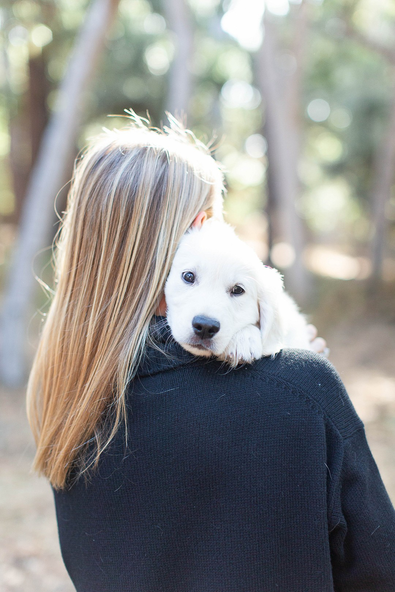 cute puppy snuggling on woman's shoulder | ©Laura & Rachel Photography