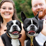 Dog-friendly Wedding Photos | Richmond, Virginia