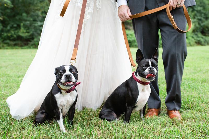 wedding photos with dogs | ©Megan Rei Photography, Richmond, VA
