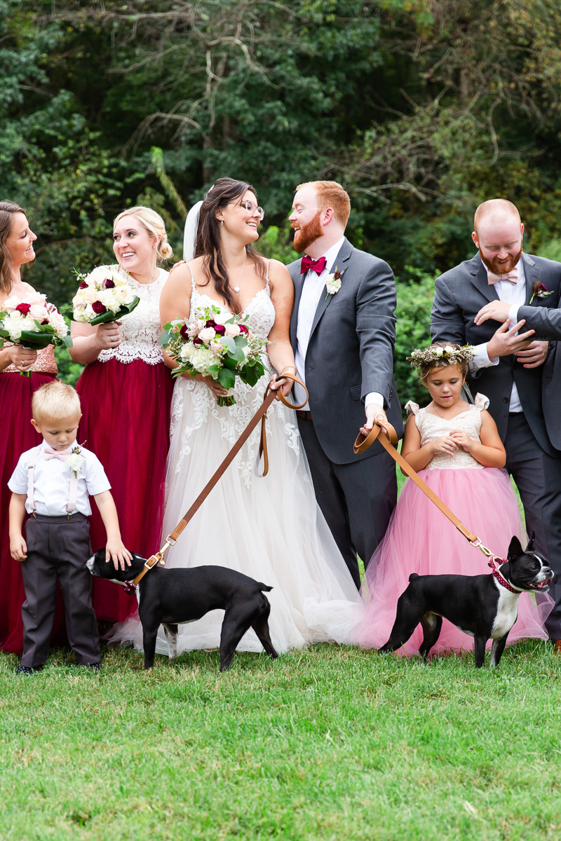 wedding party and Boston Terriers | ©Megan Rei Photography, Northern Virginia