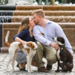 Happy Tails: Pepper & Jack the Hound Mixes | Charleston